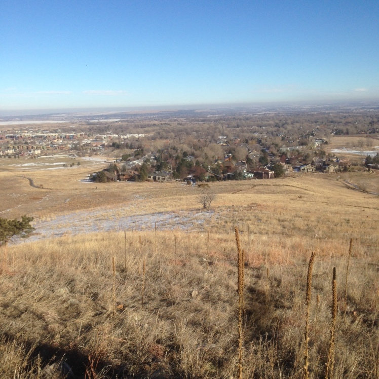 The brown haze in this photo I took on an afternoon walk is smog over Denver. Part of the pollution here is ozone.