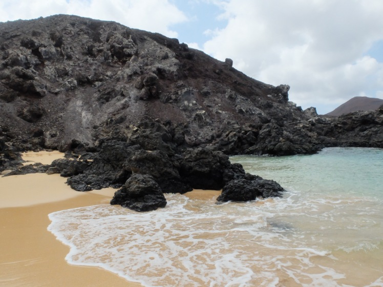 Comfortless Cove in Ascension Island (credit: Christina Williamson)