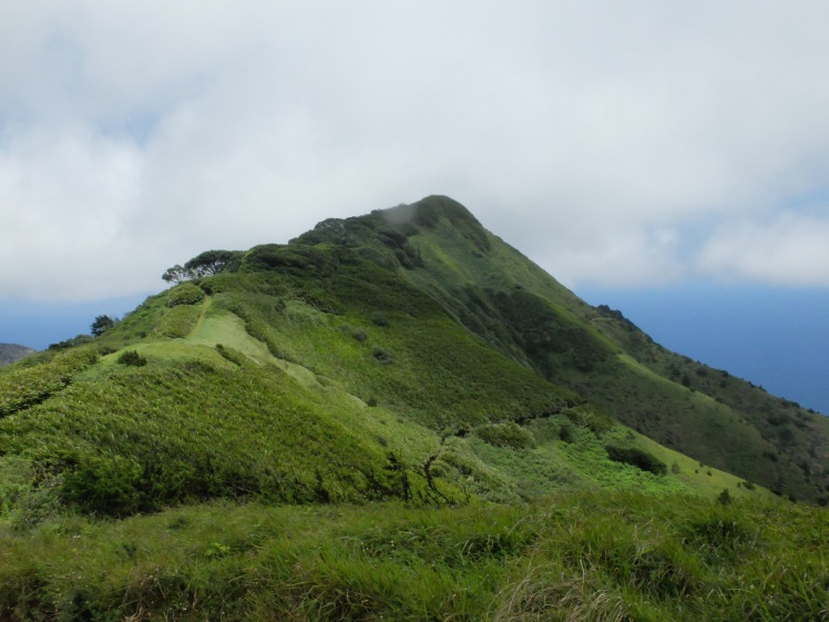 Green Mountain on Ascension Island (credit: Christina Williamson)