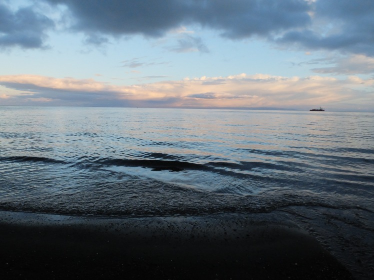 View of the Strait of Magellan from Punta Arenas (credit: Christina Williamson)