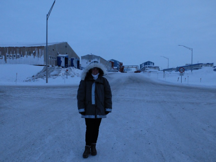 Me in a borrowed arctic parker on Thule Air Base, Greenland (credit: Christina Williamson).